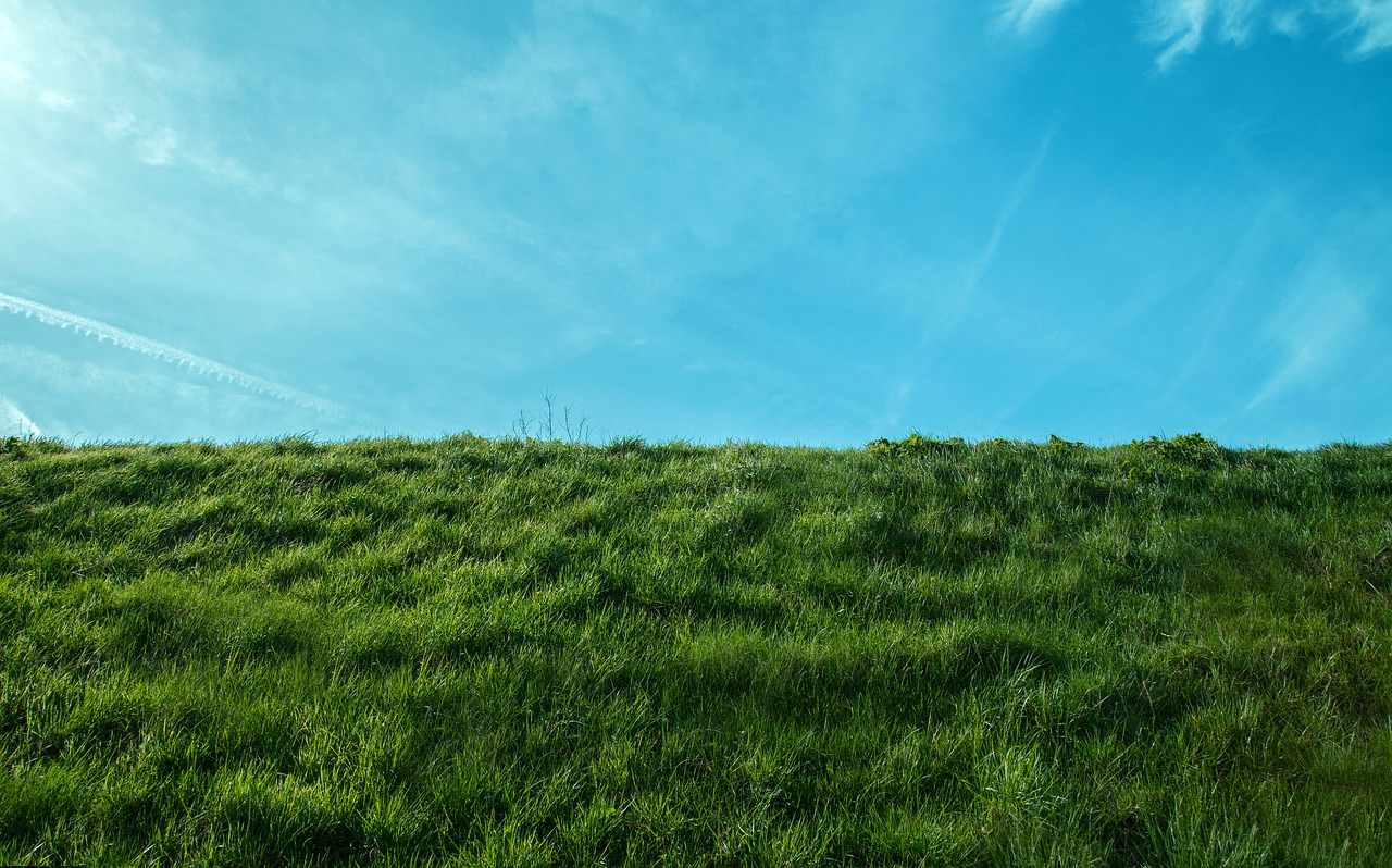 ブラームス野の寂寥のイメージ画像、青い空と緑の草原